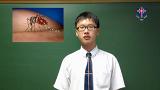 Reporting on Dengue Fever (登革熱)